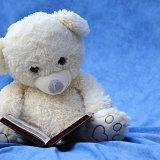 小説家になりたい